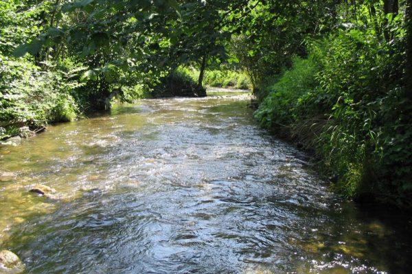 Na rieke pri Tisovci vznikne chránený areál